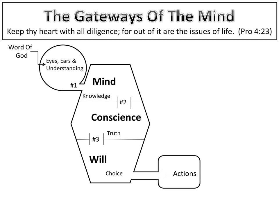 The Gateways Of The Mind